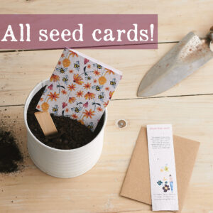 All seeds cards